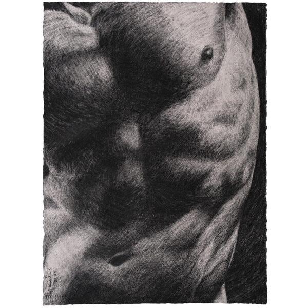 Man torso nude drawing