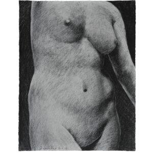 Female torso drawing